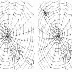 spiderman_maze1