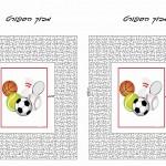 sport_maze12