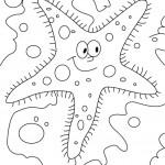 דף צביעה כוכב ים 3