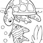 דף צביעה מפגש בין צב ים לדג