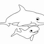 דף צביעה לוויתן 9