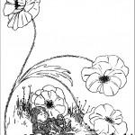 דף צביעה דורותי ישנה למרגלות הפרח