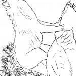 דף צביעה זאב 15