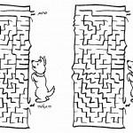 dog_maze1