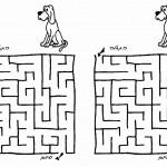 dog_maze2