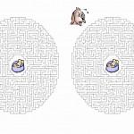 dog_maze3