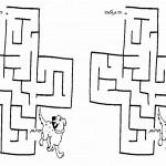 dog_maze5