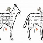 dog_maze6