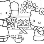 דף צביעה קיטי בחנות פרחים