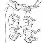 דף צביעה סיד תלוי על ענף