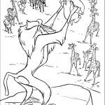 הקוף מראה את סימבה לשאר החיות
