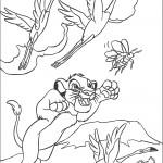 דף צביעה סימבה מנסה לתפוס את המקק