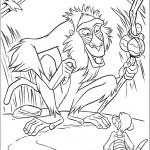 דף צביעה טימון פוגש בקוף