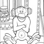 דף צביעה השימפנזה מייסון מאחורי הקלעים