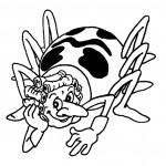 דף צביעה הדבורה טקיה