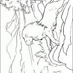דף צביעה אסלן האגדי מייסד נרניה