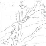 דף צביעה פיטר פבנסי בנרניה