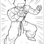 דף צביעה יאמצ'ה, לוחם וידידו של גוקו
