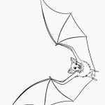 דף צביעה העטלף