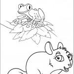 דף צביעה צפרדע וסנאי