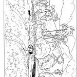 דף צביעה נוף - הנגב