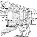 דף צביעה חוות סוסים בטבע