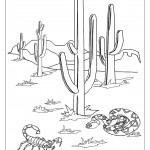 דף צביעה קקטוס במדבר