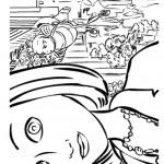 דף צביעה כוורת בסרט 14