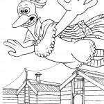 התרנגול רוקי עף באוויר
