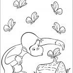 ג'ורג' הסקרן צופה בפרפרים