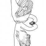 דף צביעה ברווזים מתנשקים