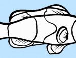 לחצו על דפי צביעה של דגים להגדלה ולהדפסה