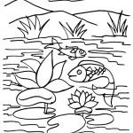 דף צביעה דגים פוגשים בשושנת מים