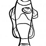 דף צביעה דג קרפיון