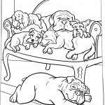 הכלבים נחים על כורסא מרהיבה במלון
