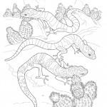 דף צביעה לטאות זוחלות במדבר