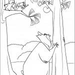 דף צביעה הדוב בו והסנאים
