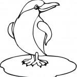דף צביעה הפינגווינים ממדגסקר 5