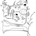 דף צביעה בובו ויוגי אוספים דבש