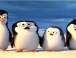 """כנסו לדפי צביעה של הסרט הפינגווינים ממדגסקר הפינגווינים ממדגסקר סרטון לצפייה ישירה ארבעת הפינגווינים התחמנים, סקיפר, קובלסקי, ריקו ופריווט, מורדים במוסכמות ומחליטים להילחם באויב הוותיק, ד""""ר אוקטביוס בריין. לשם כך […]"""