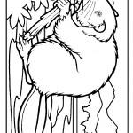 beaver_coloring_11