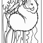 beaver_coloring_4
