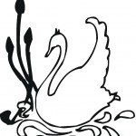 swan-coloring-12