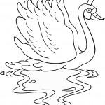 swan-coloring-7