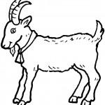zodiac-coloring-7