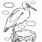 storks-coloring-9